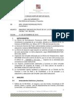 INFORME TECNICO N°     -2013, edif.rizo patron