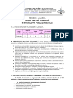 Programa Practica Ped PIPP-3