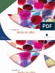 Catalogo de Placas11