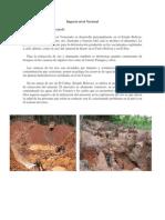 Actividad minera en Venezuela.docx