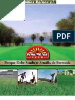 Bermuda Book