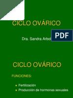 16.- Ciclo Ovarico