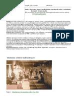 PASSARELI Mundaneum a Web Semantica- Discussao Sobre a Revolucao Nos Conceitos de Autor e Autoridade Das Fontes de Informacao