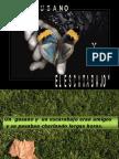 El Gusano y El Escarabajo - G