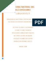 131369680 Historia Natural Del Alcoholismo