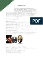 TEORÍA CELULAR.doc