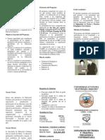 triptico  diplomado en pedagogia villamontes.docx
