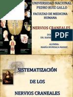 Sistematización de Los Nervios Craneales