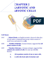 Chap 2 - Organelles and their functions