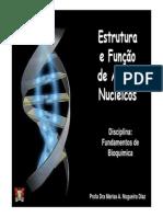 Ácidos Nucleicos - Aula 2