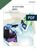 trabajo_terminales_visualizacion_datos.pdf