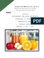 Manual Final ENMEX