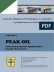 Peak Oil. Sicherheitspolitische Implikationen Knapper Ressourcen 11082010