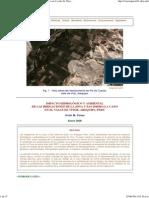 Impacto Hidrologico y Ambiental de Las Irrigaciones en El Valle de Vitor, Arequipa, Peru, Victor Miguel Ponce