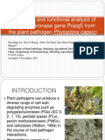 site directed mutagenesis a paper1.ppt