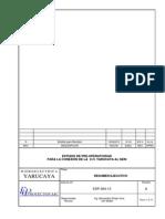 EDP-064-13 Resumen Ejecutivo - C.H. Yarucaya