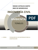 TUNEL.docx