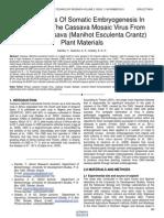 Effectiveness of Somatic Embryogenesis in Eliminating the Cassava Mosaic Virus From Infected Cassava Manihot Esculenta Crantz Plant Materials