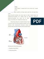 Penyakit Jantung Katup