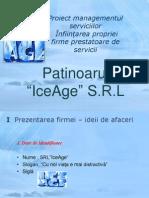 Proiect Managementul Serviciilor IceAge