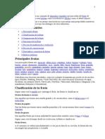 ALIMENTOS FRUTAS  50000