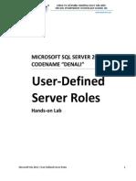 User Defined Server Roles.pdf