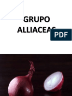 Grupo Alliaceas