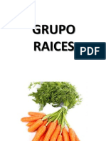 Grupo Raices