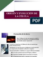 Hemato. Origen y Evolución de La Célula