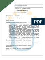 _Trabajo2_farmacia magistral.pdf