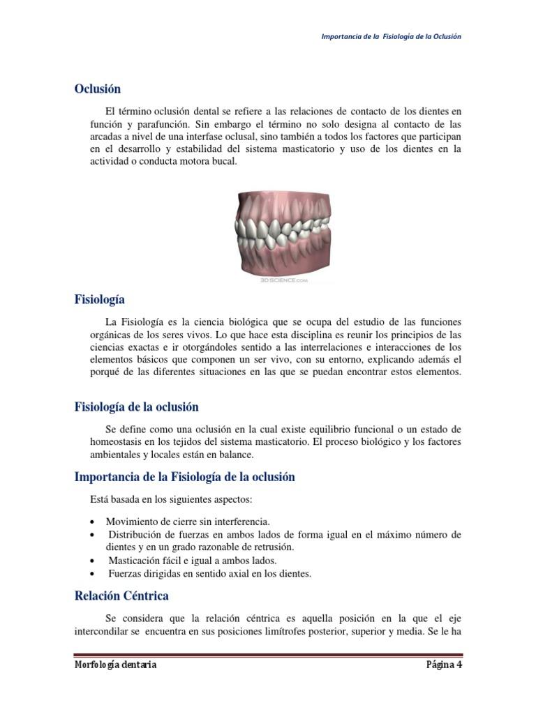 Lujo Anatomía Y Fisiología Clases Cerca De Mí Viñeta - Imágenes de ...