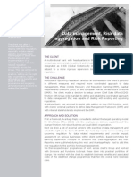 Data Management Risk Data Aggregation and Risk Reporting