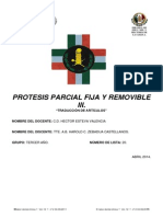 (264848669) Art 4 2 Parcial Protesis