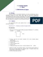 Roteiro de Alula Pratica - Fisiologia Vegetal