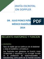 Doppler Testicular