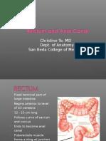 Rectum Anus Anatomy 2009 11-3
