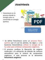 Fotosínt Bio