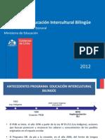 PPT EIB Consulta Bases Curriculares LI