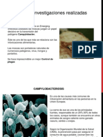 Expo Ambiental (1)