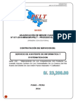 Informatica Pelt