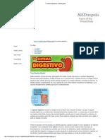 Tu Sistema Digestivo - MEDtropolis