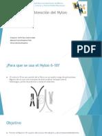 Obtencion del Nylon.pptx