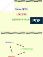 Managers, Leaders, Entrepreneurs (1)