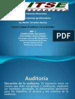 Diagrama de Flujo de Auditoria y No Conformidades_iima-7_u1