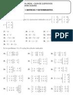 Guia de Ejercicios. Algebra Lineal. Matrices y Determinantes