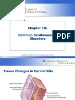 Common Cardiovascular Disorders