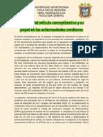 Artículo 1-Función del retículo sarcoplásmico y su papel en las enfermedades cardiacas.docx