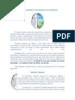 Hemisferios Cerebrales y El Procesamiento de La Información