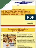 Fispa Del Hipotálamo
