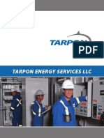 Tarpon Energy Services Llc Brochure